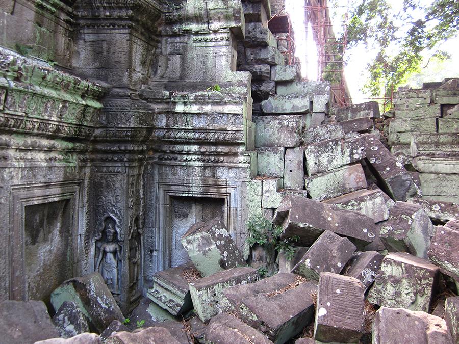 Ta Prohm temple, Angkor, Cambodia 10