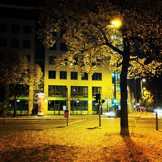 Autumn nighttime, Berlin Germany