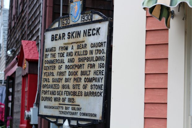 Bear Skin Neck