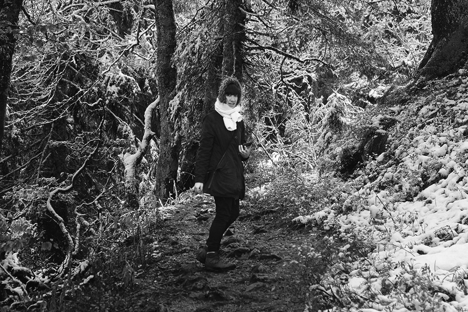 Black Forest (in B&W)