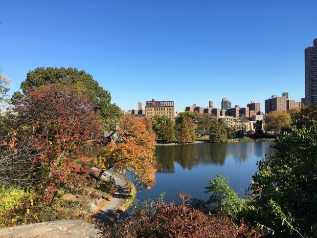 Autumn in Central Park, NYC (PHOTOS) - https://travelsofadam.com/2016/11/autumn-central-park/