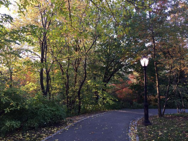 Autumn in Central Park, NYC (PHOTOS) - https://travelsofadam.com/2016/11/autumn-central-park/