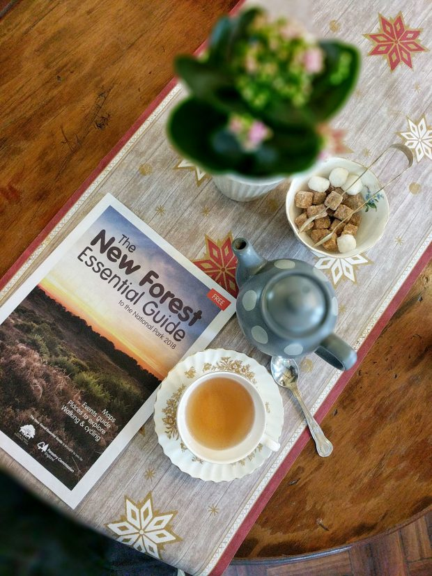 New Forest Essential Travel Guide