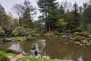 japanese garden in fairmount park philadelphia